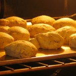 Squash Yeast Raised Biscuits